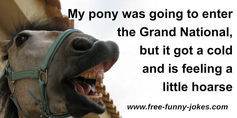Funny Grand National Jokes